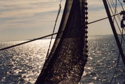 Segelschiff im Gegenlicht