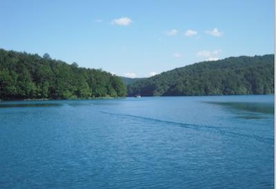 Gewässerpanorama mit Wald