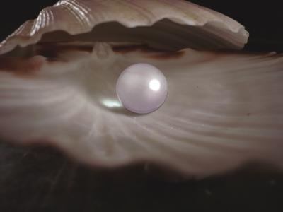 Perle in einer Muschel