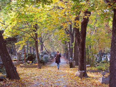 Herbstlicher Friedhof