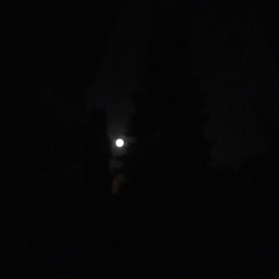 Mond in schwarzer Nacht