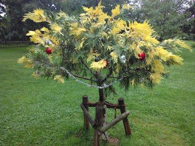 Blühender geschmückter Weihnachtsbaum
