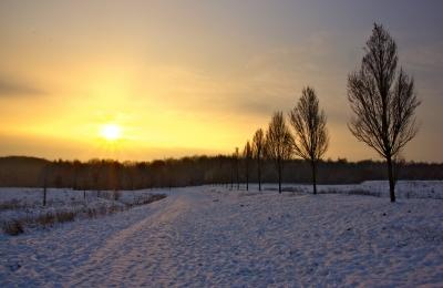 Sonnenaufgang in einer Schneelandschaft